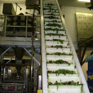 flighted conveyor belt